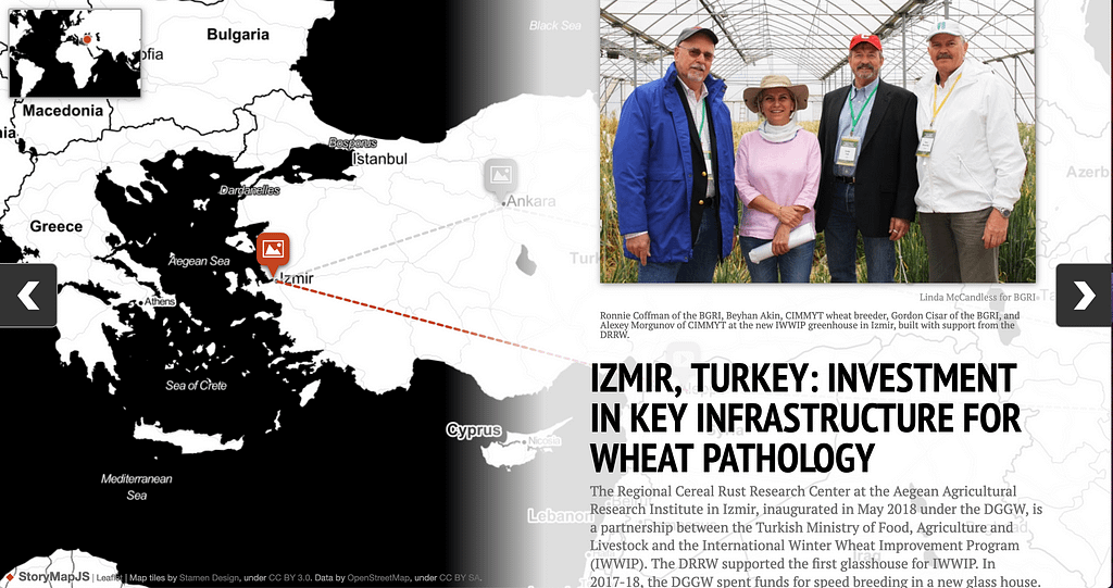 The new interactive map allows visitors to visually explore the milestones that allowed a global network of researchers to fight threats to wheat production.