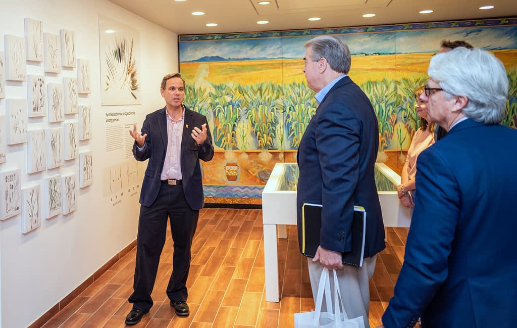 The director of the Genetic Resources program, Kevin Pixley (left), gives a tour of the recently remodelled Germplasm Bank museum to US Under Secretary McKinney (second from left). (Photo: Eleusis Llanderal/CIMMYT)