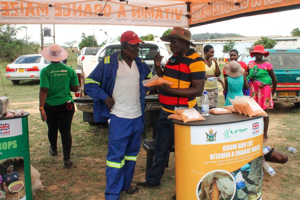 A seed company representative outlines the benefits of an orange maize variety at a seed fair in Masvingo, Zimbabwe. (Photo: S.Chikulo/CIMMYT)