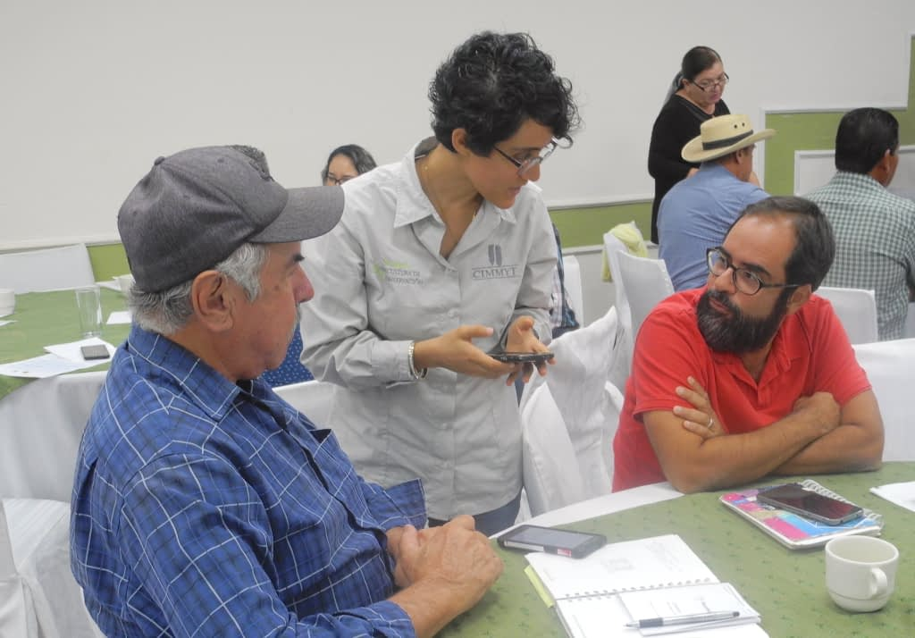 CIMMYT research assistant Lorena Gonzalez (center) helps local farmers try out the new COMPASS app during the workshop in Ciudad Obregon, Sonora state, Mexico. (Photo: Alison Doody/CIMMYT)