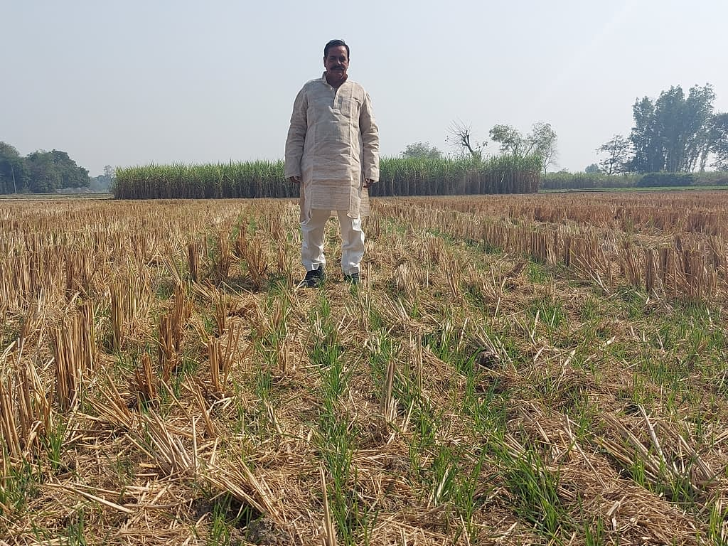 Surender Prasad stands in his field, where wheat grows under rice-crop residue. (Photo: Nima Chodon/CIMMYT)