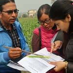Training participants examine a fall armyworm on a maize leaf. (Photo: Bandana Pradhan/CIMMYT)