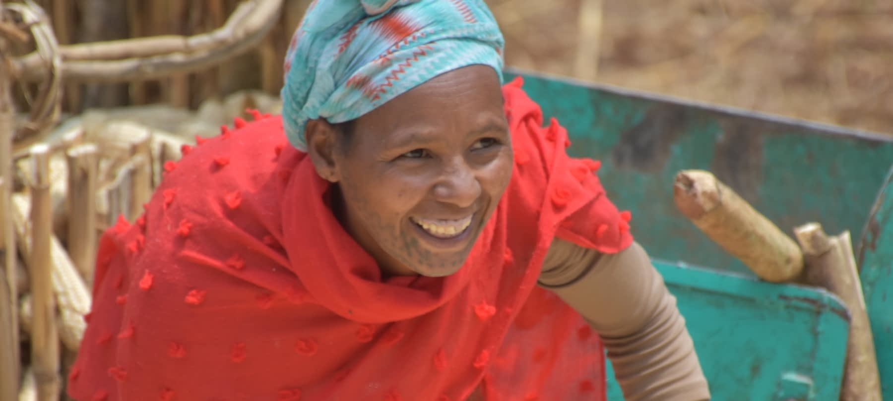 Kidane Mengistu is much happier with the threshing service she gets from the service provider. (Photo: Simret Yasabu/CIMMYT)