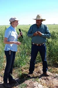 Roberto Encinas being interviewed by Nele Velhurst, a member of CIMMYT's CA team