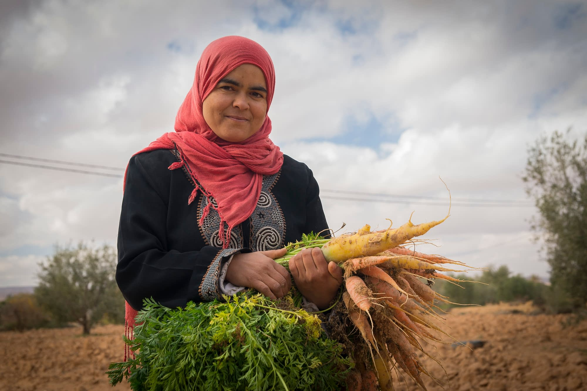 Growing vegetables in Tunisia. (Photo: ICARDA)