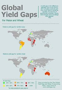 Global-Yield-Gaps-for-Maize-and-Wheat1