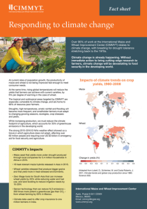 cimmyt-responding-to-climate-change