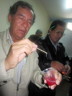 R-Peru2-DNA
