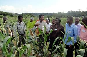 Menkir-and-group-IITA-Training-Aug-2012_JohnMacRobert