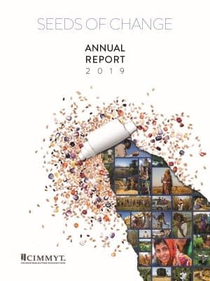 Download CIMMYT Annual Report 2019