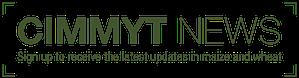 CIMMYTNEWSlayer1