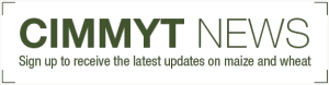 https://www.cimmyt.org/cimmytnews-subscription/