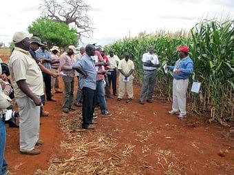 Stephen-Mugo-explaining-WEMA-trials-to-Seed-Company