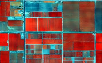 False-color image of the CIMMYT-Obregon station captured from the multispectral camera at 1-meter resolution on 15 February 2013. Plots with dense vegetation are shown in red, the north-south road on the left is N. E. Borlaug, the east-west road in the middle of the image divides the 710 and 810 blocks.
