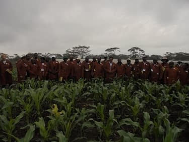 Students from the Africa Plant Breeding Academy during a visit at the MLN screening facility in Naivasha, Kenya. Credit: CIMMYT