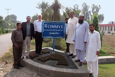 CIMMYT Faisalabad Office (left-right): Dr, Imtiaz Muhammed, Country Liaison Officer, CIMMYT Pakistan; Dr. Etienne Duveiller, South Asia Regional Director, CIMMYT; Dr. Thomas Lumpkin, Director General, CIMMYT; Dr. Javed Ahmad, Wheat Botanist, Wheat Research Institute WRI Faisalabad; Dr. Makhdoom Hussain, Director, Wheat Research Institute WRI Faisalabad; Mr. Abdul Hamid, CIMMYT Faisalabad; Mr. Muhammad Noor, CIMMYT Faisalabad. Photo by Miriam Shindler.