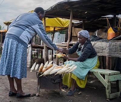 Roadside vendor sells roasted maize cobs in Kenya. (Photo: P.Lowe/CIMMYT)