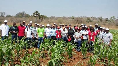Photo: Participants in the maize breeding course in Zambia. Photo: Cosmos Magorokosho/CIMMYT.