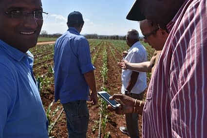 Kinyua Madhan from Zamseed and Nicolai NASECO testing SeedAssure on smartphone in the field in Kiboko, Kenya. Photo credit: CIMMYT.