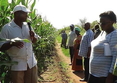 Mphatso Gama explaining how CA works with Principal Secretary ofAgriculture Erica Maganga looking on.