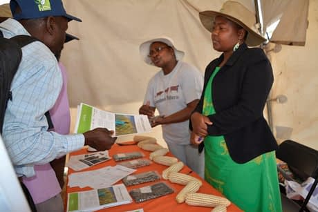 International Livestock Research Institute (ILRI) research officer Irenie Chakoma (extreme right) and CIMMYT research associate Angeline Mujeyi are inundated by requests for information from smallholder farmers at the Mutoko seed fair. Photo: J. Siamachira/CIMMYT.
