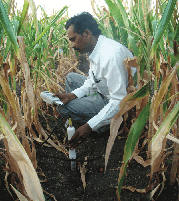 A researcher uses a vertical probe to measure moisture at different soil depths. (Photo: CIMMYT)