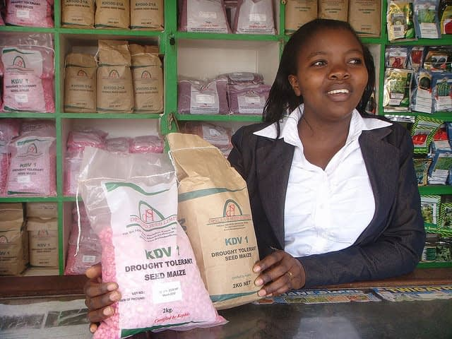 A shop attendant displays drought-tolerant seed at the Dryland Seed Company shop in Machakos, Kenya. (Photo: CIMMYT)