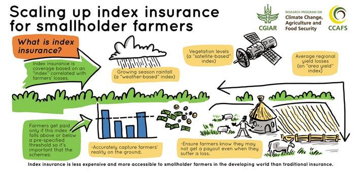 Index-Insurance
