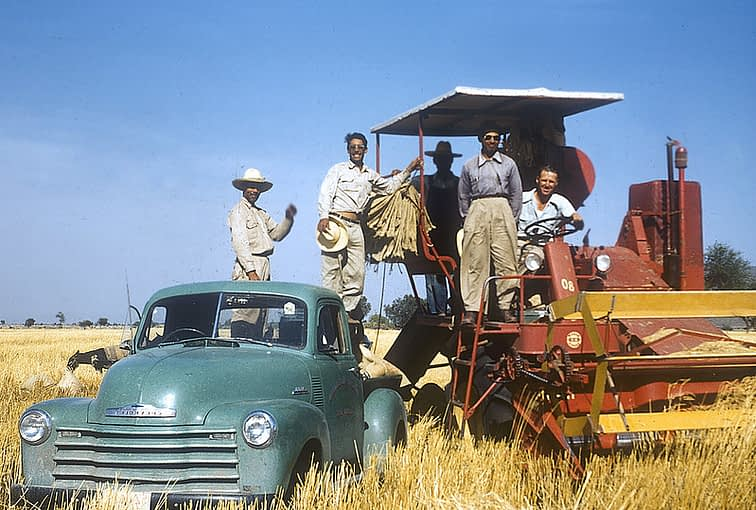 Norman Borlaug sits on a tractor next to field technicians in Sonora, Mexico. (Photo: CIMMYT)