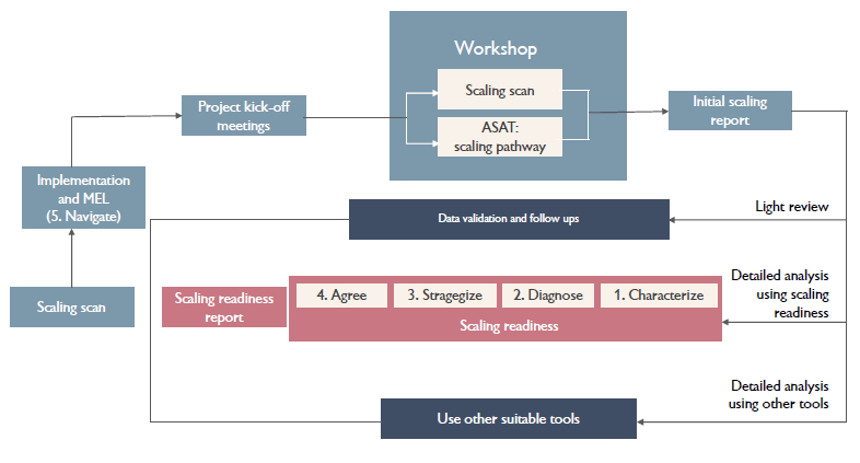 An overview of the proposed ILRI scaling process. (Graphic: ILRI)