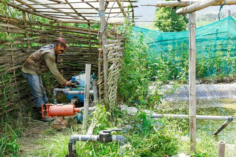 A farmer in Nepal operates a water pump for drip irrigation. (Photo: Sharad Maharjan/IMWI)