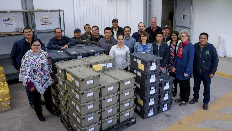 CIMMYT's Germplasm Bank staff preparing a seed shipment to send to Svalbard. Photo: Alfonso Cortés/ CIMMYT