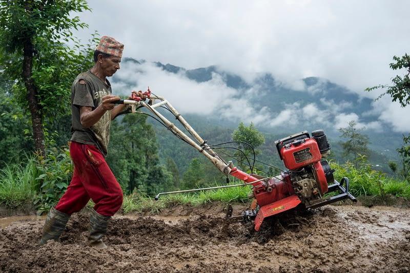 Farmer Jhalak Bhandari uses a mini tiller to puddle his field for transplanting rice in Thulochaur, Sindhupalchok. Photo: CIMMYT/P. Lowe.