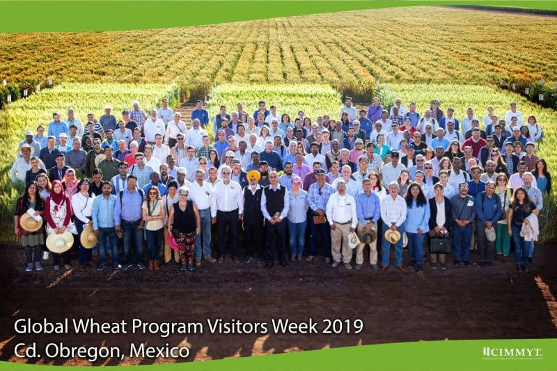 Participants in the Field Day 2019 at the experimental station in Obregón stand for a group photo. (Photo: Ernesto Blancarte)