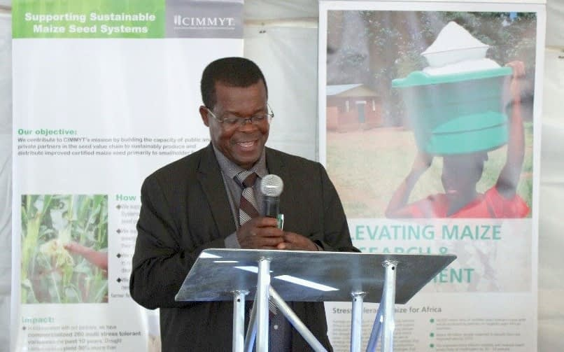 The director of Zimbabwe's Department of Research and Specialist Services, Cames Mguni, gives official remarks during the CIMMYT field day. (Photo: Catherine Magada/CIMMYT)
