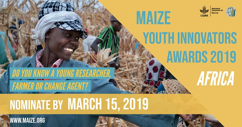 2019 Maize Youth Innovators Awards – Africa