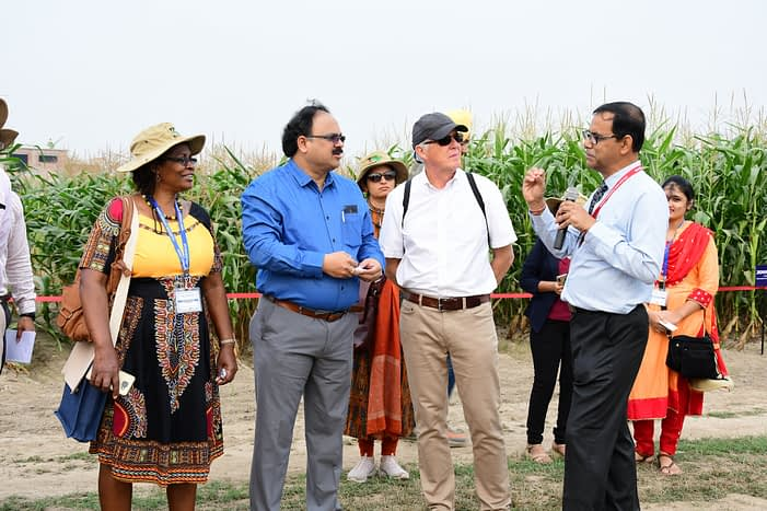 Participants listen to a briefing during the field visit of the 13th Asian Maize Conference, in Ludhiana, India. (Photo: Manjit Singh/Punjab Agricultural University)