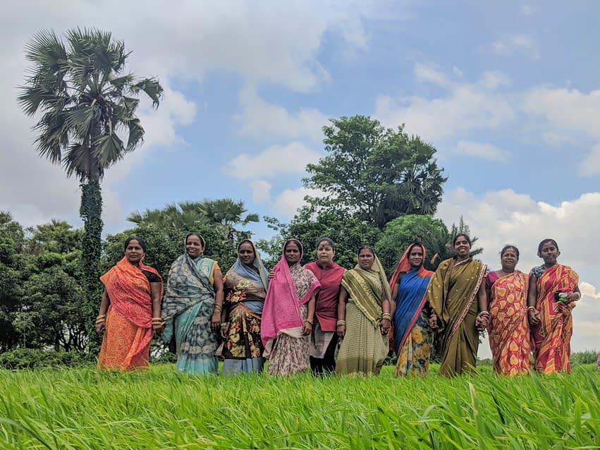 In Odisha and Bihar, CSISA has leveraged the social capital of women's self-help groups formed by the government and other civil society partners and which offer entry points for training and social mobilization, as well as access to credit. (Photo: CSISA)