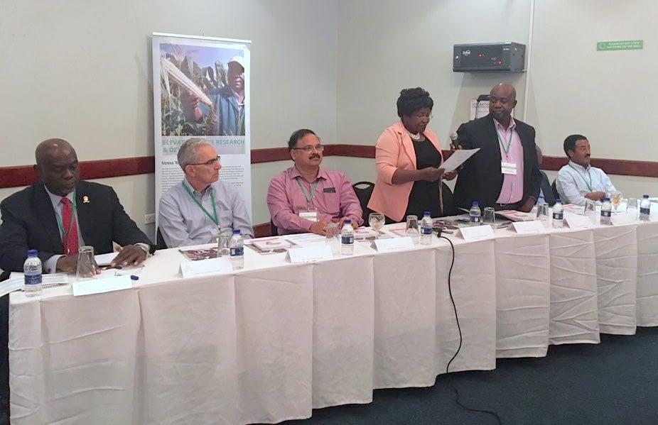 The deputy director of the Zambia Agriculture Research Institute (ZARI), Monde Zulu (fourth from left), gives the opening address of the STMA Annual Meeting 2019. Left to right: Mick Mwala, University of Zambia; Tony Cavalieri, Bill & Melinda Gates Foundation; B.M. Prasanna, CIMMYT; Monde Zulu, ZARI; Mwansa Kabamba, ZARI; Cosmos Magorokosho, CIMMYT; and Abebe Menkir, IITA.
