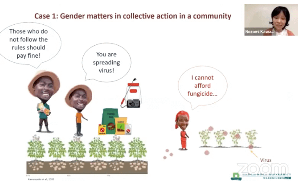 Gender and social dimensions of pest and disease control: a call for collaboration (Graphic: Nozomi Kawarazuka/CIP)