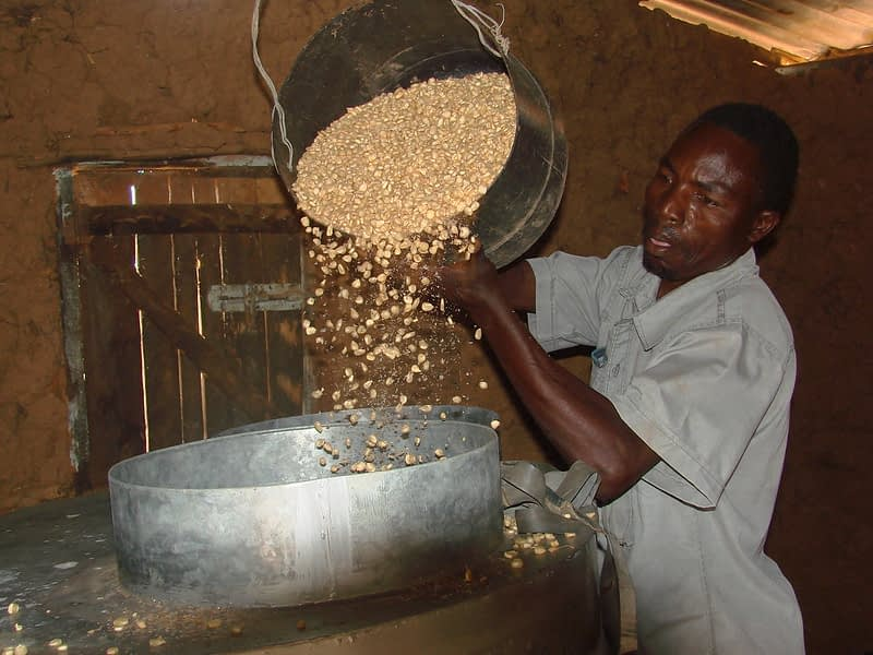 A farmer from Embu, Kenya, demonstrates how to load maize grain into a metal silo for storage. (Photo: CIMMYT)