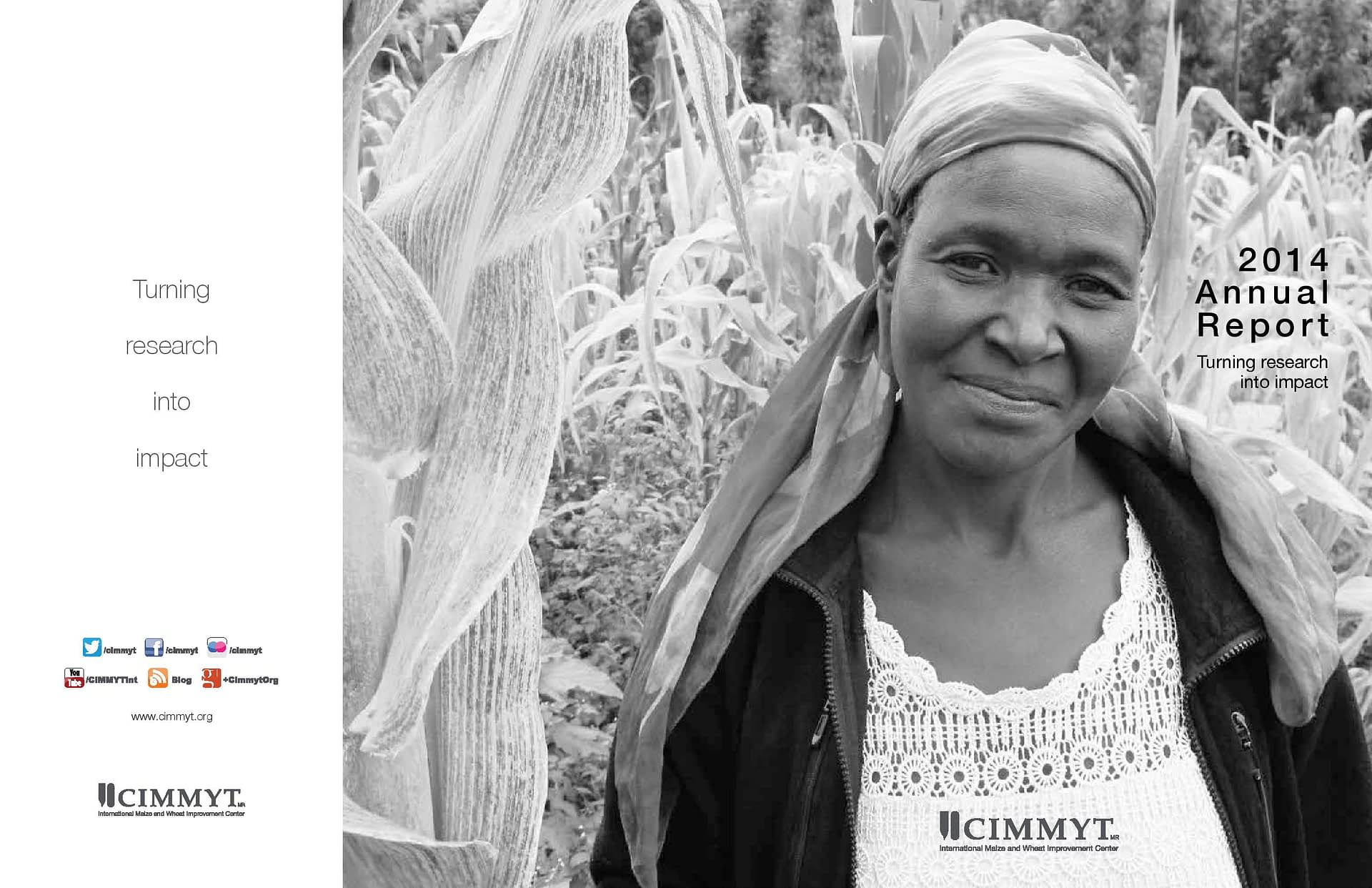 Background image for CIMMYT